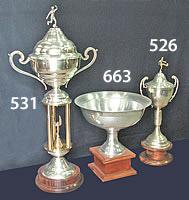 copas_pujol_trofeos_10