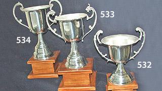 copas_pujol_trofeos_2